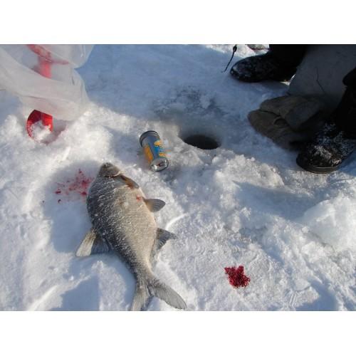 прогноз на рыбалку во владимире